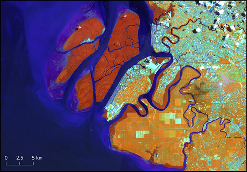 A false colour composite of the Klang Islands, Malaysia. At infra-red wavelengths differences between mangroves and plantation are more obvious